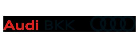 Sponsor Audi BKK